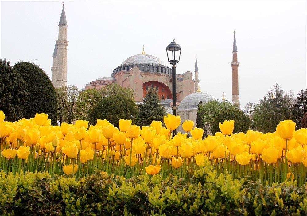 İstanbul Lale Festivali